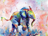 African Elephant Baby Prints by Sarah Stribbling