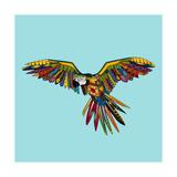 Harlequin Parrot Premium gicléedruk van Sharon Turner