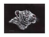 White Tiger Pastel Arte di Sarah Stribbling