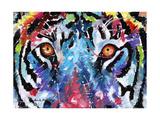 Occhi di tigre Stampe di Sarah Stribbling