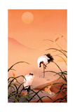 Birds Prints by Haruyo Morita