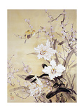 Spring Blossom Posters by Haruyo Morita