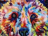 Bear Multicolour Posters af Sarah Stribbling