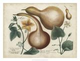 Exotic Weinmann Botanical I Lámina giclée por  Weinmann