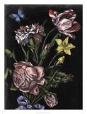 Dark Floral IV Lámina giclée por Naomi McCavitt