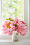 Peonies in Vase II Photographic Print by Karyn Millet