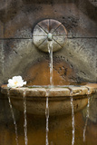 Fountain I Photographic Print by Karyn Millet