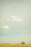 The Vaulted Sky Impressão fotográfica por Roberta Murray