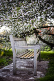Spring Bench III Reproduction photographique par Beth Wold