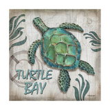 Turtle Bay Print by Todd Williams