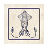 Squid Sq Prints by N. Harbick