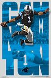 NFL: Carolina Panthers- Cam Newton 16 Fotografia