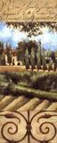Villa In Tuscany Affiche par Liz Jardine