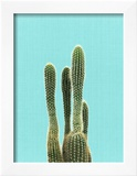 Cactus On Blue Art by  LILA X LOLA