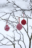 Branch in Winter with Christmas Bulbs, Cord Sample Photographic Print by Andrea Haase