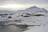 Landscape, Dalvik Area, Eyjafjšrdur, North Iceland Reproduction photographique par Julia Wellner