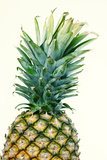 Pineapples, Detail, South-Fruit, Fruit, Collective-Fruit Photographic Print by Herbert Kehrer