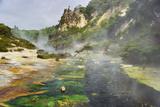 Hot Springs, Waimangu Volcanic Valley, Rotorua, Bay of Plenty, North Island, New Zealand Impressão fotográfica por Rainer Mirau