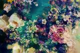 Poetic Flowers in Water Stampa fotografica di Alaya Gadeh