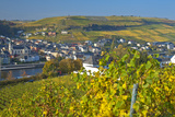Luxembourg, Remich, Townscape, Vineyards, Autumn Colours Photographic Print by Chris Seba