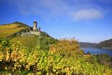 Autumn View of the Castle Ruin FŸrstenberg over the Village Rheindiebach Photographic Print by Uwe Steffens