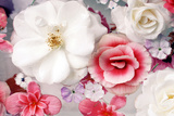 Pink and White Blossoms in Water Reproduction photographique par Alaya Gadeh