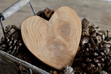 Heart, Wood, Cone, Decoration, Still Life Photographic Print by Andrea Haase