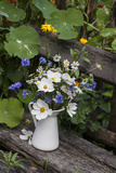 Bouquet, Summer Flowers, Bank Photographic Print by Andrea Haase
