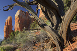 Cathedral Rock, Sedona, Arizona, Usa Photographic Print by Rainer Mirau
