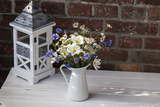 Bouquet, Summer Flowers, Lantern Photographic Print by Andrea Haase