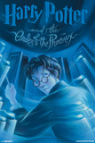 Harry Potter And The Order Of The Phoenix- Book Art Cover ポスター