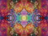 Energetic Multicolor Ornament from Flower Photographs, Emotional Layer Work Reproduction photographique par Alaya Gadeh