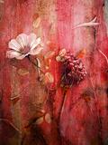 A Montage of Acre Flowers Fotografisk tryk af Alaya Gadeh