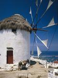 Greece, Mykonos, Mykonos City, Windmill, Donkey Fotografisk tryk af  Thonig
