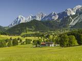 Ramsau, Dachstein, Summer Meadow, Styria, Austria Photographic Print by Rainer Mirau