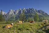 Austria, Salzburg, Mandlwand, Hochkšnig (Mountain) Photographic Print by Rainer Mirau