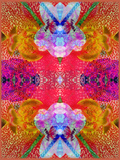 Colorful Layer Work from Blossoms Photographic Print by Alaya Gadeh