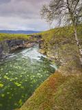 Sweden, Lapland, Abisko National Park, Gorge Photographic Print by Rainer Mirau