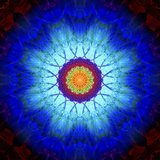 Mandala Ornament of Flowers, Composing Stampa fotografica di Alaya Gadeh