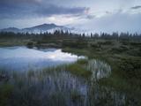 Sunrise in the Nature Reserve Siebenmšser, KitzbŸhel Alps, Moor, Hochkrimml, Gerlosplatte Photographic Print by Rainer Mirau
