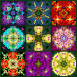 A Mandala from Flowers Photographic Print by Alaya Gadeh