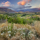 Feehly Hill Scenic Reserve, Arrowtown, Otago, South Island, New Zealand Photographic Print by Rainer Mirau