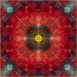 An Energetic Symmetric Onament from Flower Photographs Stampa fotografica di Alaya Gadeh