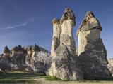 Blossoming Tree and Fairy Chimneys Near Pasabagi, Tuff Stone, Gšreme, Cappadocia, Anatolia, Turkey Fotografie-Druck von Rainer Mirau