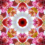 Colorful Symmetric Layer Work from Flowers Reproduction photographique par Alaya Gadeh