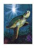 Turtle Plakat af Scott Westmoreland