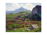 Pasture and Tilled Fields Poster di William Wendt