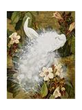 White Peacocks on Pink Hibiscus Art par Jesse Arms Botke