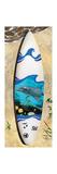 Dolphin Board Lámina por Scott Westmoreland