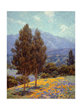 Poppies and Lupines Póster por Granville Redmond